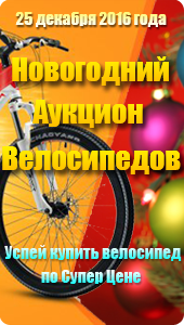 Новогодний Аукцион Велосипедов